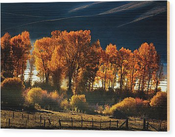Wood Print featuring the photograph Colorado Autumn Morning by Andrew Soundarajan