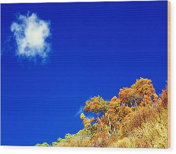 Colorado Blue Wood Print by Karen Shackles
