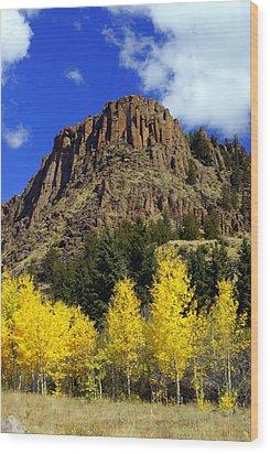 Colorado Butte Wood Print by Marty Koch