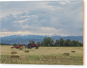 Wood Print featuring the photograph Colorado Country by James BO Insogna