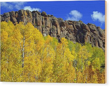 Colorado Fall 3 Wood Print by Marty Koch