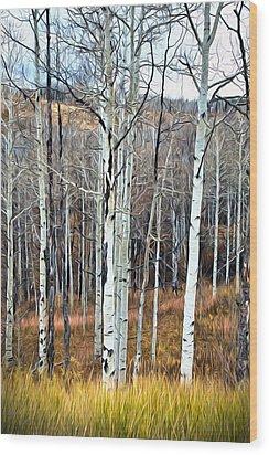 Colorado Fall Aspen Wood Print by James Steele