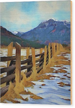 Colorado Fence Line  Wood Print by Jeff Kolker