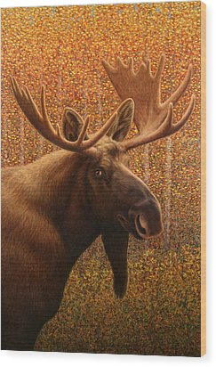 Colorado Moose Wood Print by James W Johnson