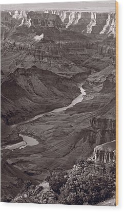 Colorado River At Desert View Grand Canyon Wood Print by Steve Gadomski