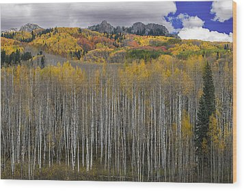 Colorado Splendor Wood Print