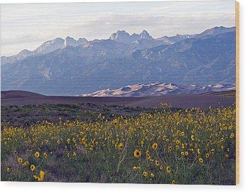 Colorado Style Landscape Sunflowers On The Sangre De Cristos Wood Print by Scotts Scapes