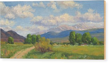Colorado Summer Wood Print by Bunny Oliver