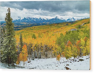 Colorado Valley Of Autumn Color Wood Print