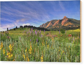 Colorado Wildflowers Wood Print by Scott Mahon