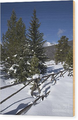 Colorado Winter Wonderland Wood Print