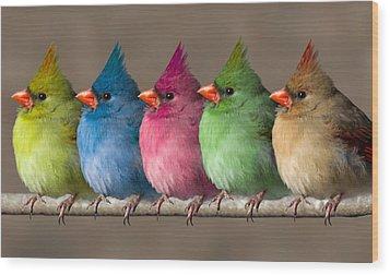 Colored Chicks Wood Print