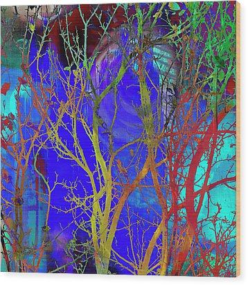 Wood Print featuring the photograph Colored Tree Branches by Susan Stone