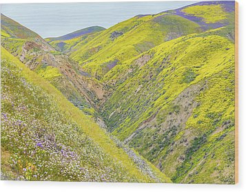 Wood Print featuring the photograph Colorful Canyon by Marc Crumpler