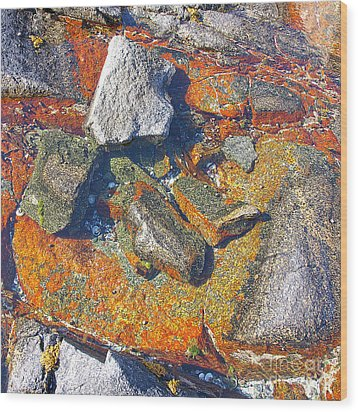 Colorful Earth History Wood Print by Heiko Koehrer-Wagner
