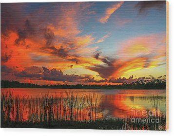Colorful Fort Pierce Sunset Wood Print by Tom Claud
