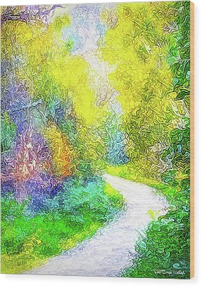 Wood Print featuring the digital art Colorful Garden Pathway - Trail In Santa Monica Mountains by Joel Bruce Wallach