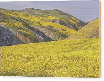 Wood Print featuring the photograph Colorful Hill And Golden Field by Marc Crumpler