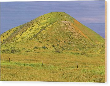 Wood Print featuring the photograph Colorful Hill by Marc Crumpler