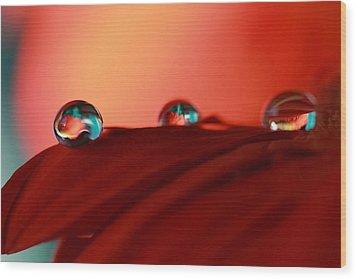 Colorful Macro Water Drops Wood Print
