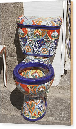 Colorful Mexican Toilet Puebla Mexico Wood Print by John  Mitchell