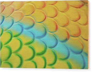 Colorful Scales Wood Print by Adam Romanowicz