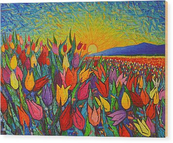 Colorful Tulips Field Sunrise - Abstract Impressionist Palette Knife Painting By Ana Maria Edulescu Wood Print