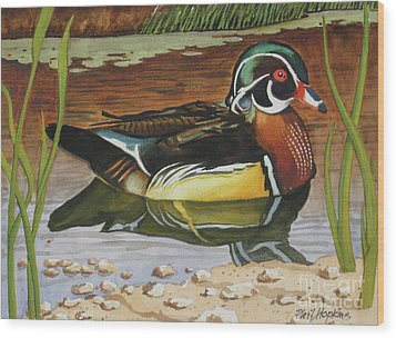 Colorful Wood Duck Wood Print by Phil Hopkins