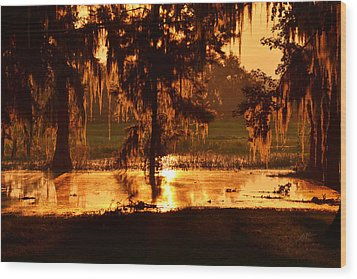 Coloring The Swamp With Sunrise Wood Print