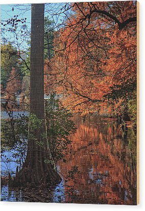 Wood Print featuring the photograph Colors And Reflections At Trap Pond by Robert Pilkington