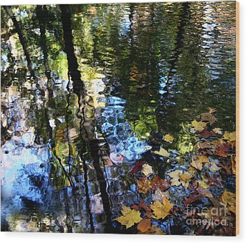 Colors Are Deeds And Sufferings Of Light Wood Print by Monika A Leon