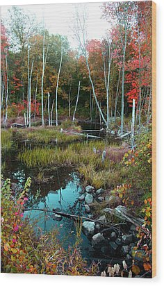 Colors By The Stream Wood Print by Joseph G Holland