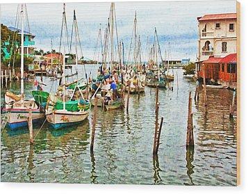 Colors Of Belize - Digital Paint Wood Print