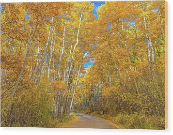 Wood Print featuring the photograph Colors Of Fall by Darren White