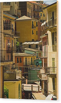 Colors Of Manarola Italy Wood Print by Roger Mullenhour