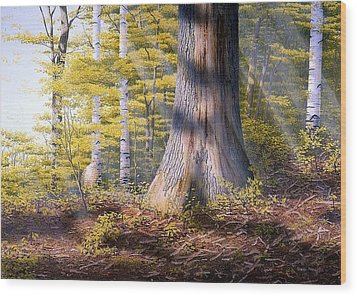 Colors Of Spring Wood Print by Conrad Mieschke