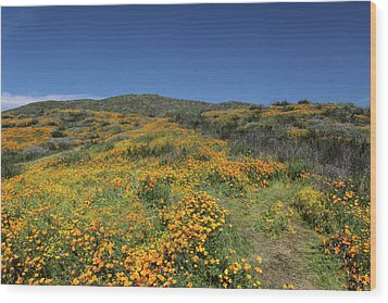 Wood Print featuring the photograph Colors Of Springtime by Cliff Wassmann