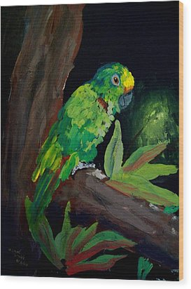 Colors Of The Parrot Wood Print by Michael Grubb