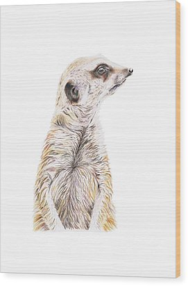 Wood Print featuring the drawing Colour Meerkat by Elizabeth Lock