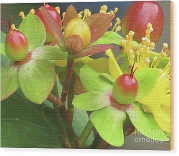 Coloured Beads Wood Print
