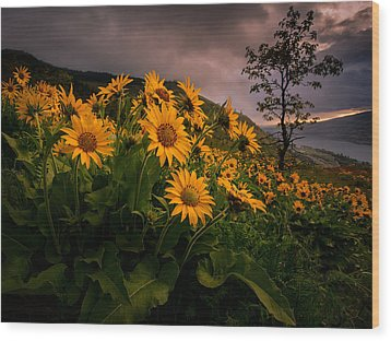 Wood Print featuring the photograph Columbia Gorge Joy by Dan Mihai