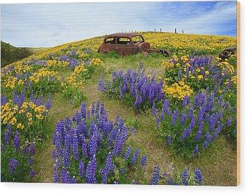 Columbia Hills Wildflowers Wood Print