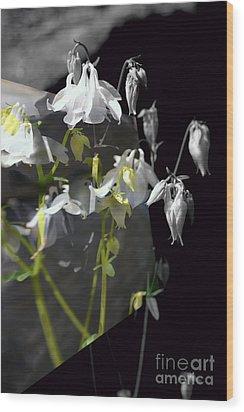 Columbine Shades Of Grey Wood Print