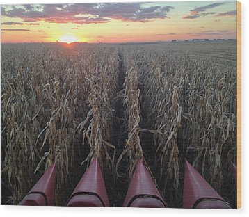 Combine Sunset H Wood Print