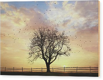 Wood Print featuring the photograph Come Fly Away by Lori Deiter