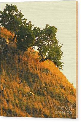 Wood Print featuring the photograph Coming Home Again by Joe Jake Pratt
