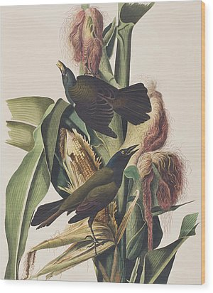 Common Crow Wood Print by John James Audubon