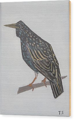 Common Starling Wood Print