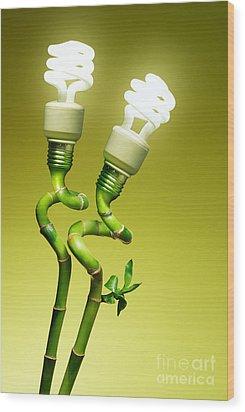 Conceptual Lamps Wood Print by Carlos Caetano