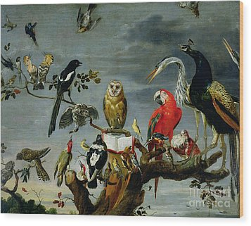 Concert Of Birds Wood Print by Frans Snijders